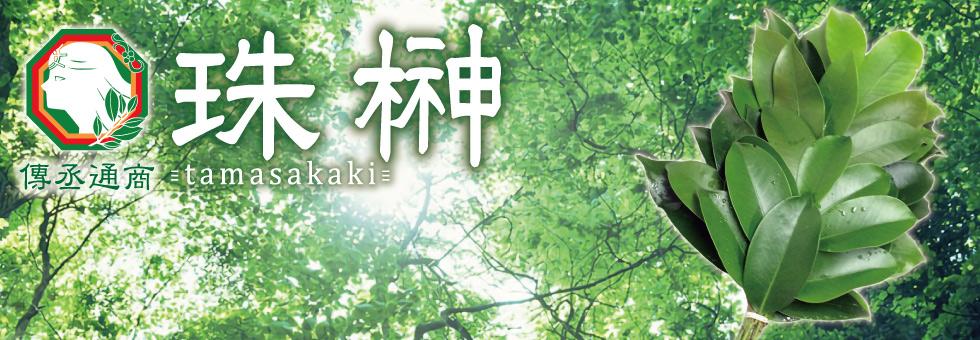 珠榊~tamasakaki~